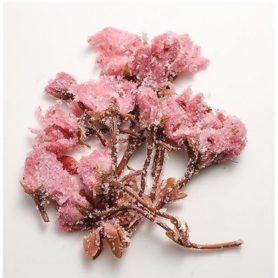 hoa anh đào muối 50gr